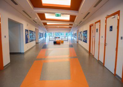 Primary Corridor